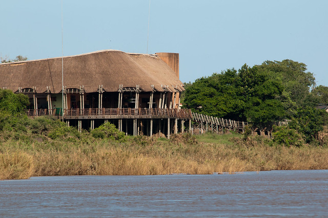 Your First Safari to The Kruger Park Lower Sabie