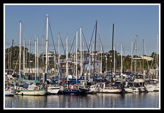 Scarborough Marina Sailing Boats-1= | by Sheba_Also