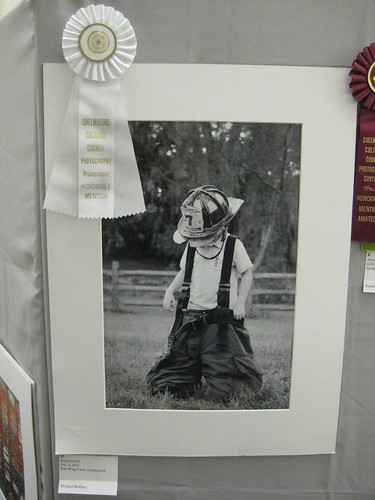 2012 Winterfest Professional - Honorable Mention | by chelmsfordpubliclibrary