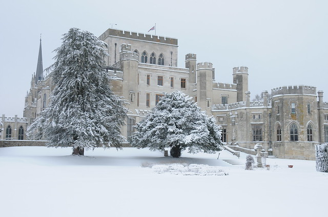 Ashridge in the Snow 012