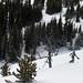 Baldy Bare Essentials Slopestyle, Mt. Baldy -7354