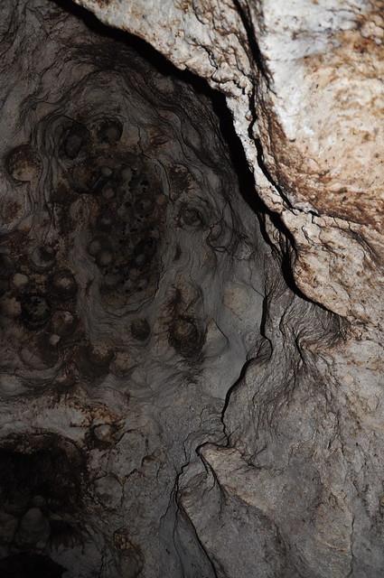 grotte remplie de chauves souris et de caca de chauves souris flickr photo sharing. Black Bedroom Furniture Sets. Home Design Ideas