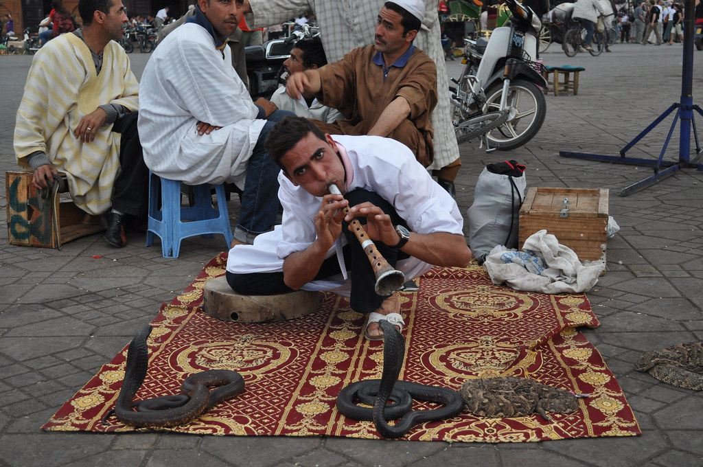 The Snake Charmer Marrakesh Market Vark1 Flickr