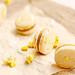 Salted Caramel Popcorn Macarons