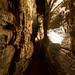 Howe Caverns - Howes Cave, NY - 2012, Apr - 06.jpg