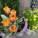 Orange Flower 01