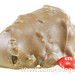 Russell Stover Giant Pecan Delight