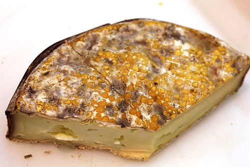 funky rind cheese | by David Lebovitz