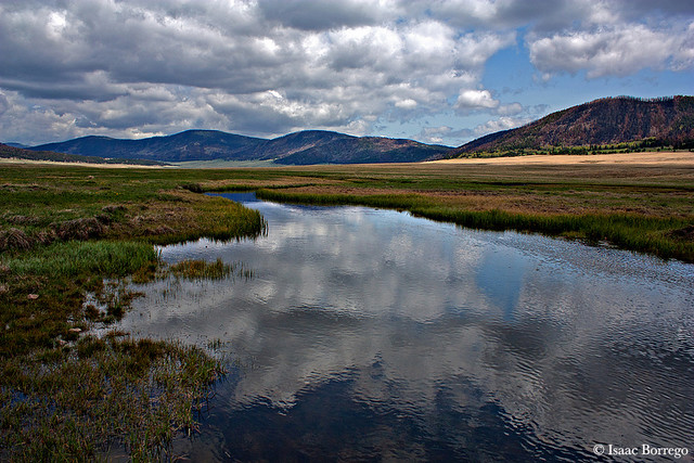 Creek in the Valles Caldera - New Mexico