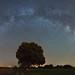 Vía Láctea-Milky Way Guadalajara