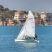 Anzio Barca a  Vela