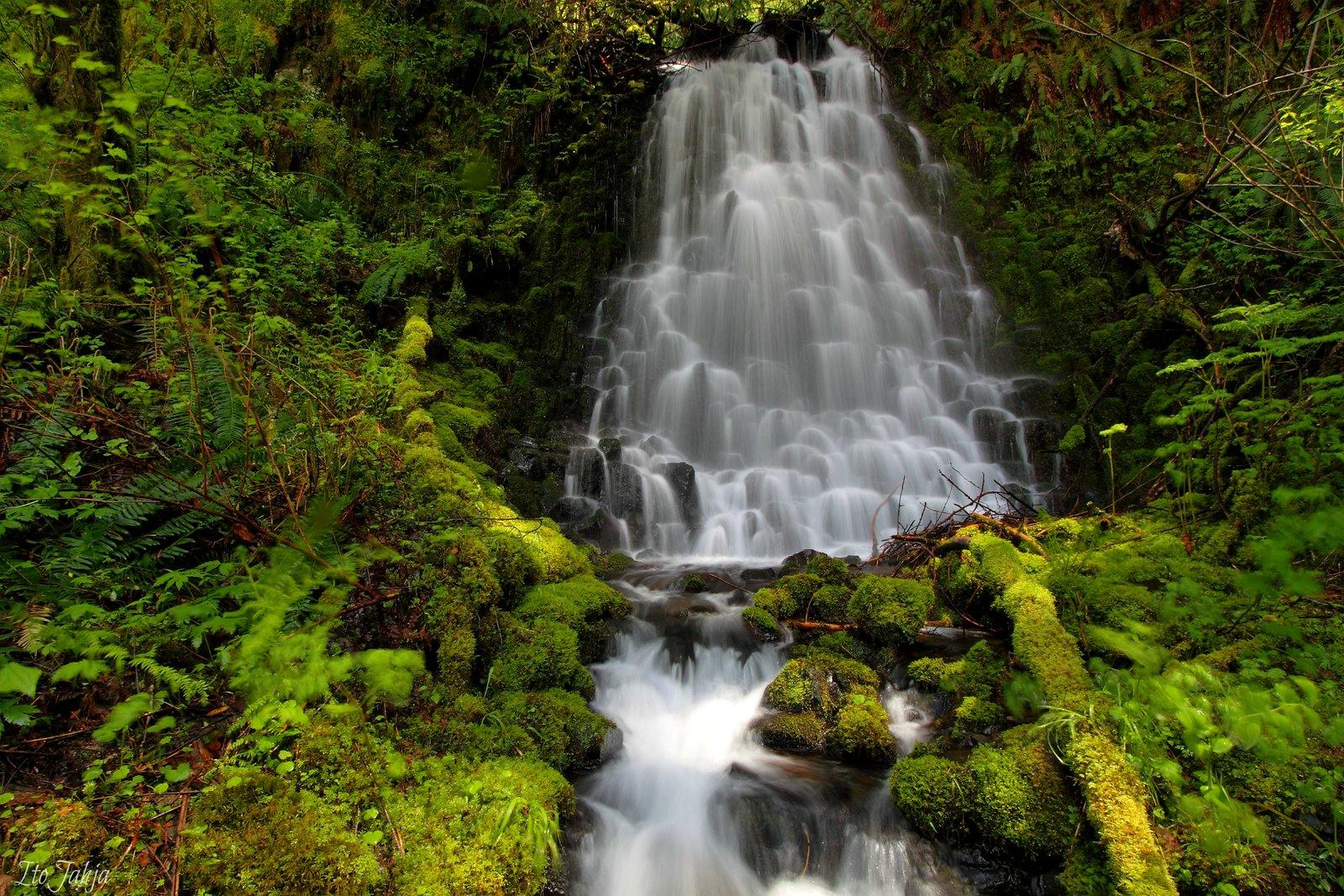 Upper Munra falls, Oregon [1600x1067]