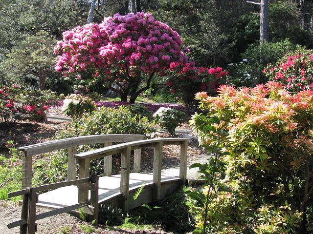 Mendocino Coastal Botanical Gardens Fort Bragg Ca Usa April 2012 Flickr Photo Sharing