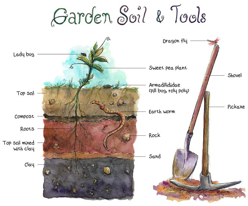 Preparing my garden s soil for planting it 39 s been ten for Preparation of soil