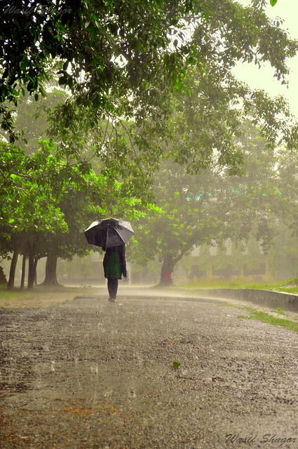Walking alone in the rain... | Flickr - Photo Sharing!