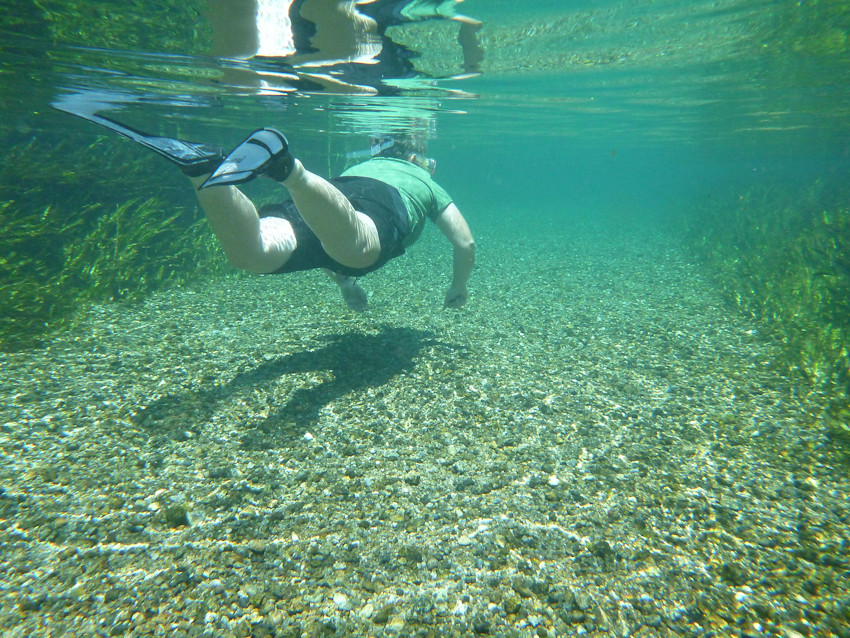 Sandra Snorkeling At Kelly Park Springs Florida