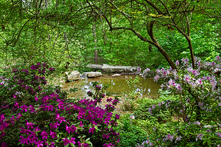Garvin Woodland Gardens | by Richkat Photography