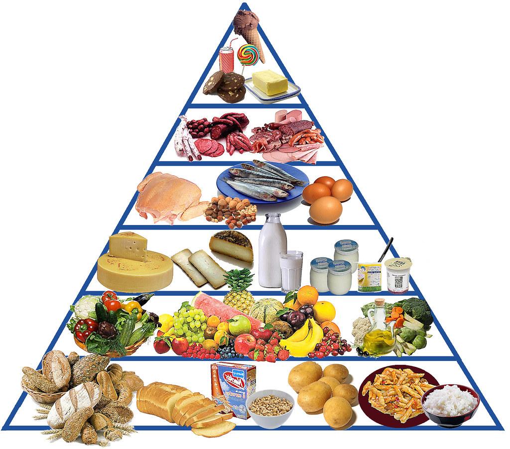 Dieta atkins forum 1