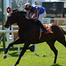 19.Power lands Irish 2000 Guineas -Irish 2000 Guineas-