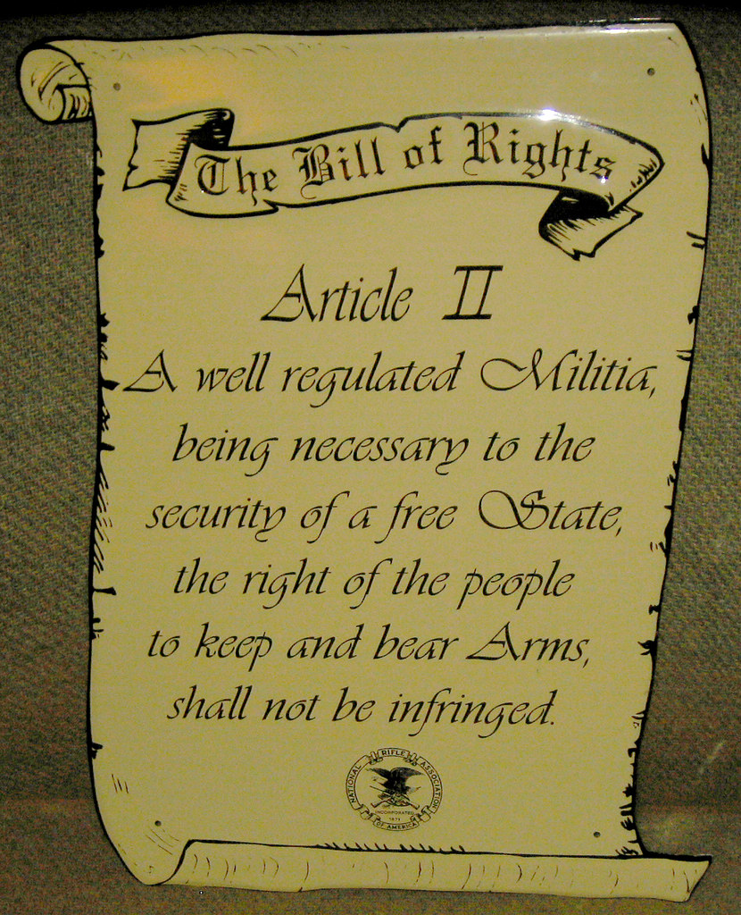 20120429 - yardsale booty - second amendment sign