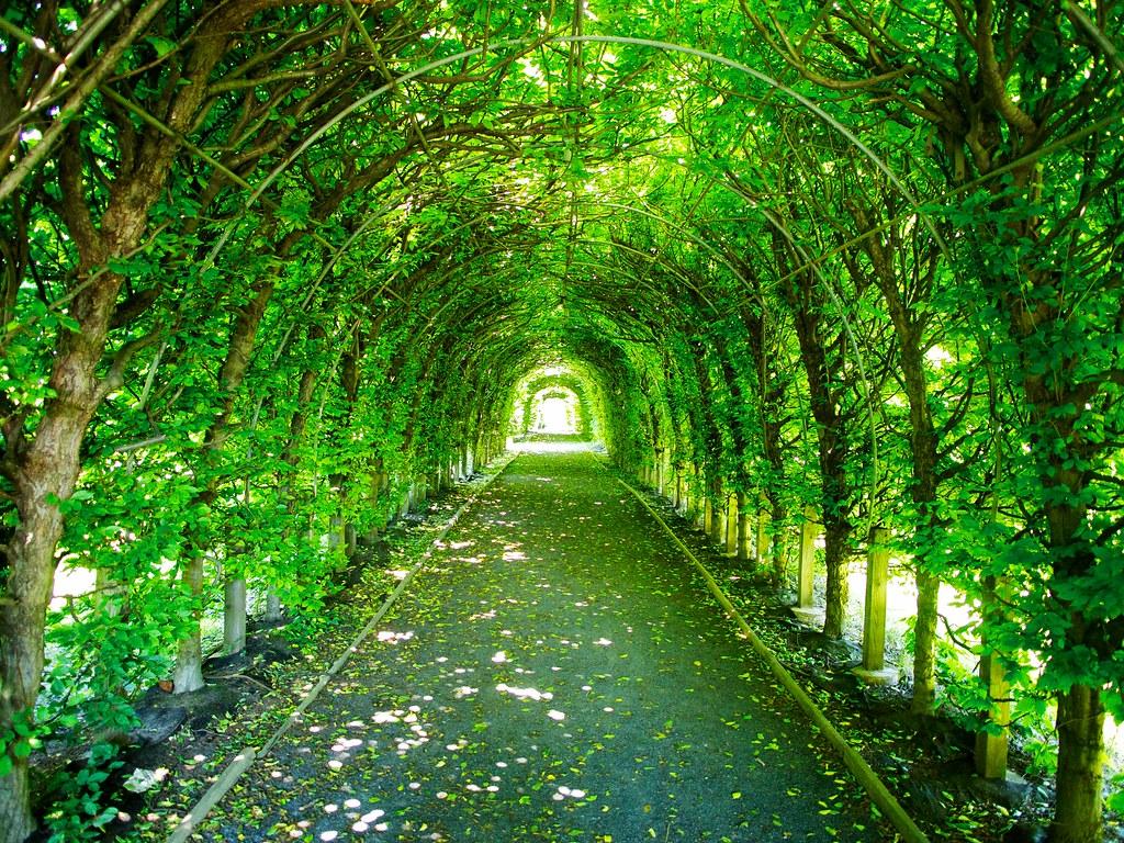 Snug Harbor Botanical Garden | Tom Scola | Flickr