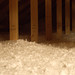 Do an Insulation Inspection (167/365)