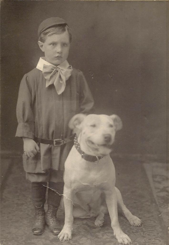 Victorian Boy with Pit Bull | Adorable early 1900s boy ...