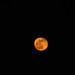 Orange moon, a bit higher