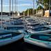 Community Sailboats