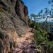 2012-04-27-Pinnacles-National-Monument-171_2_3.jpg