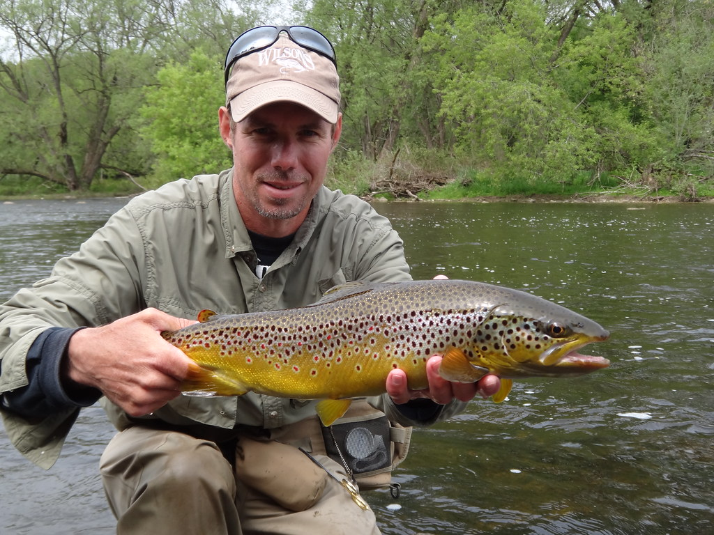 ontario fly fishing guides