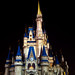 Magic Kingdom light painting