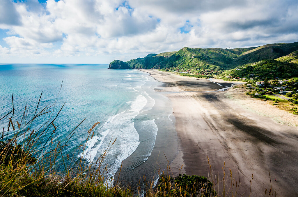 Piha beach you can buy this image now on for Landscaping companies in new zealand