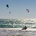 Los Lances Kites