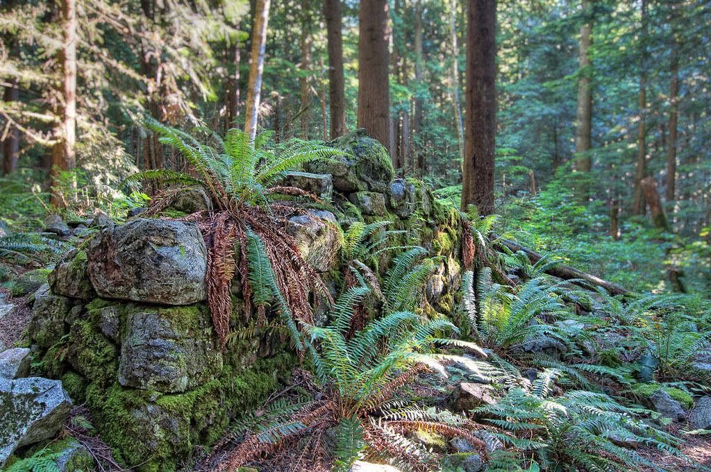 Hiking North Vancouver Island