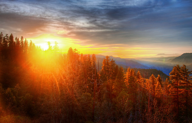 Sunset over Forest in Yosemite | Flickr - Photo Sharing!