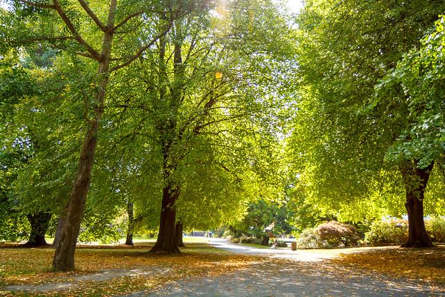 Christchurch botanic gardens flickr photo sharing for Landscape gardeners christchurch