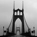St Johns Fog