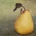 Fruit for Friday