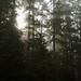 Washington (and Oregon) Explorations