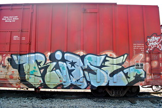 Rime MSK | by 208 Bench