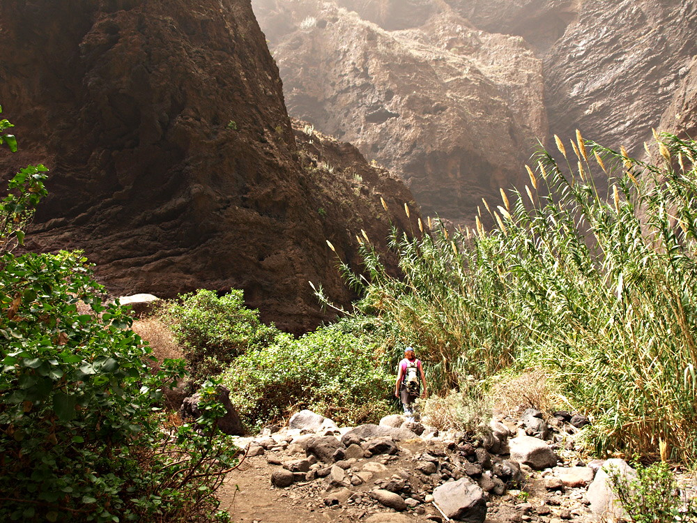 Masca Barranco, Tenerife | Hiking one of Tenerife's ...