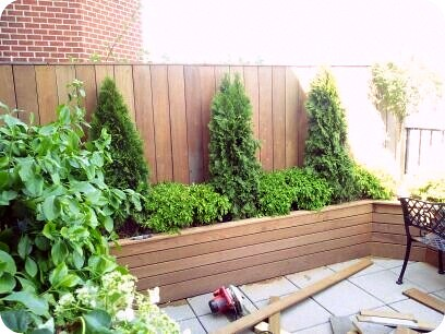 On The Making Of A Custom Built Planter Box With Arborvita
