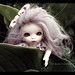 Puki Ante (Pullip Meeting 17/6/2012)