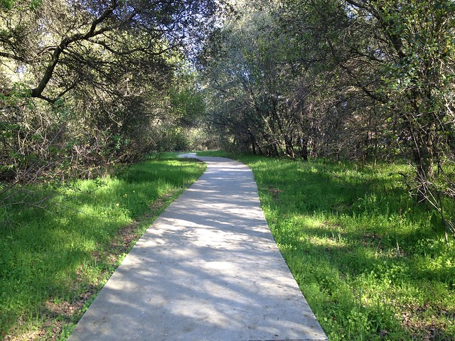 Image Result For Movies Citrus Park