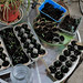Seedlings March