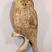 Northern Hawk Owl Carving