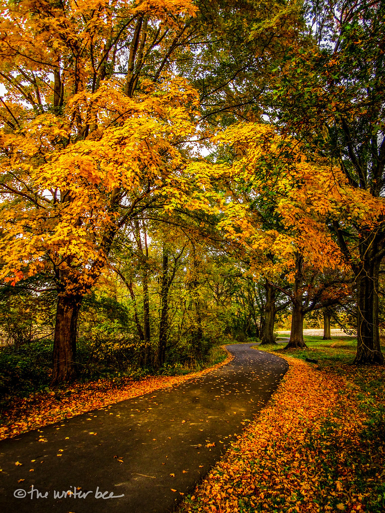 Tyler State Park, Bucks County, Pennsylvania   Once upon a ...