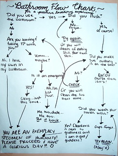 Bathroom Flow Chart: for a positive lavatory experience! | by passiveaggressivenotes