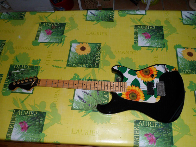 Guitares de légende 13276303194_2f6b8e321d_b